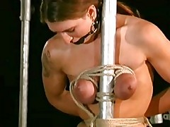 Nipple clamps on neck bar
