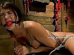 Hot beautifull lesbians with mouth ball gags and cuffed tormented by bondage mistress