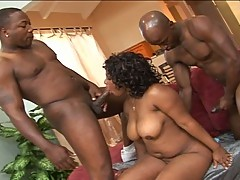 Busty black milf in a hot threesome