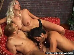 Bisexual strap on shagging with nikki hunter